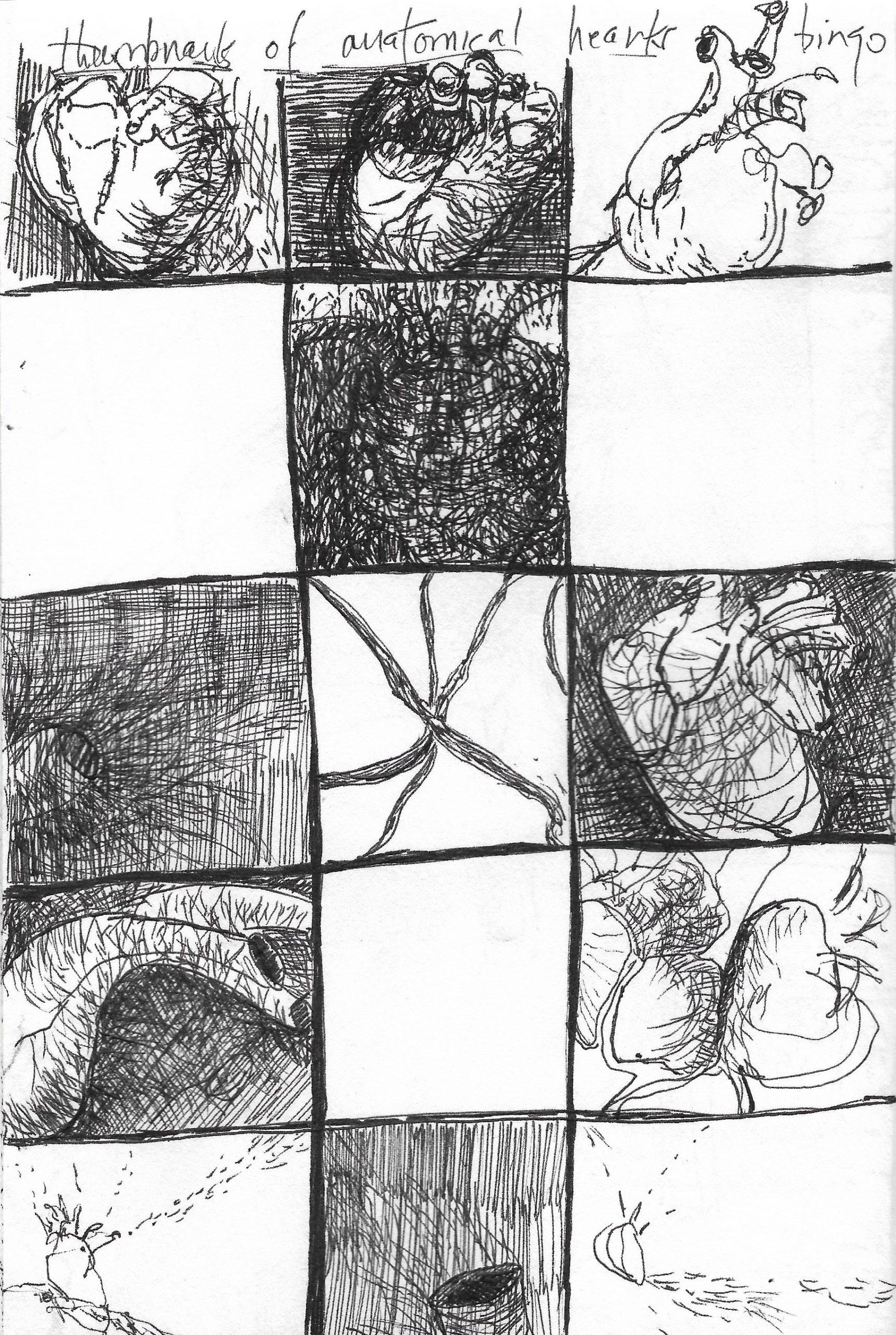 Anatomical Bingo