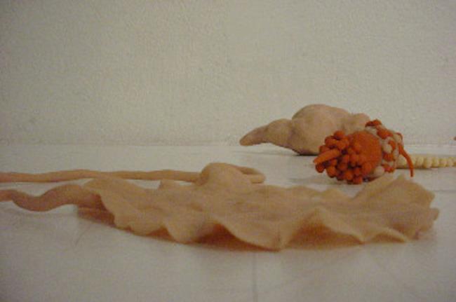 Radiolaria Sculptures