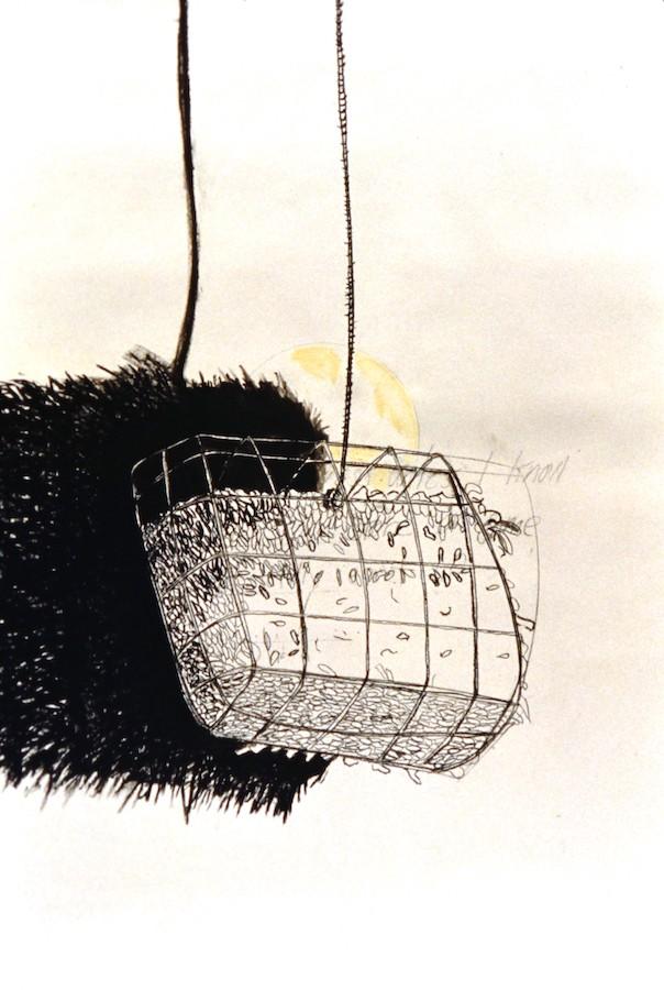 Suet Basket